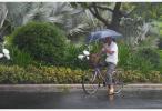 颱風安比登陸上海可能性加大 週末公園關閉中超歇戰