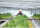 江苏农民人均年收入5年要将再增1万 主要靠这八大产业