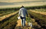 """贸易战开战不足一个月 美国农业真的""""顶不住""""了"""