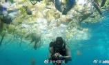 海洋生物中检出微塑料