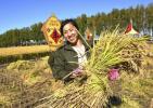 """中国农民礼赞:写在第一个""""中国农民丰收节""""到来之际"""
