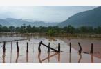 尼日利亚洪灾已致近200人死亡 多地进入紧急状态