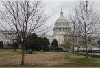 美政府停摆17天殃及各地 白宫特勤无薪仍需工作