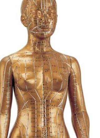国之瑰宝:天圣针灸铜人