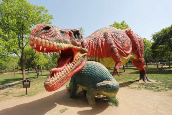 穿越亿万年时光!中原网络大咖走进西峡恐龙遗迹园