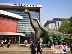 """河南省地质博物馆""""豫见地博""""最美摄影大赛开幕"""