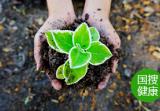 减少塑料垃圾 我国亟需做好回收体系建设