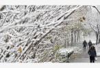 暴雪蓝色预警!北京等地局地积雪深度将达7厘米以上