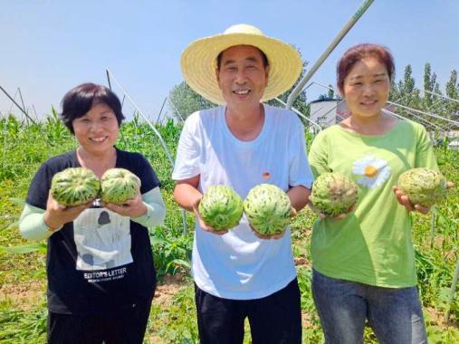 河南叶县:建起生态园 瓜果香甜采摘忙