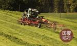 513.84億斤!山東夏糧喜獲豐收 小麥總産、單産雙創歷史新高