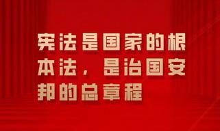 在全社会牢固树立宪法法律权威 一起来学总书记宪法金句
