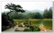 生态徐州硬棒的!不仅有6个自然保护区,还划定82块生态红线区域!