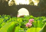说好的大雨今夜起就下,明天杭州最高气温只有23℃!