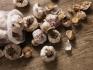 男性多吃大蒜或让精子数量减少 尽量不要生吃