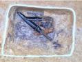 韩国出土3把两千年前铜戈 镶26枚中国五铢钱被赞国宝