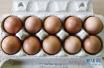 """有""""食疗""""功能?鸡蛋鸭蛋贝类里检出多种抗生素"""