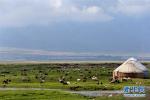新疆巴里坤草原:草绿水清 美景如画