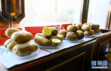 张家口:优质马铃薯批量收获上市