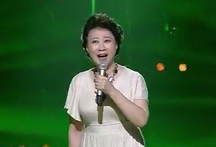 申丽娟演唱歌曲《月光下的小桥》