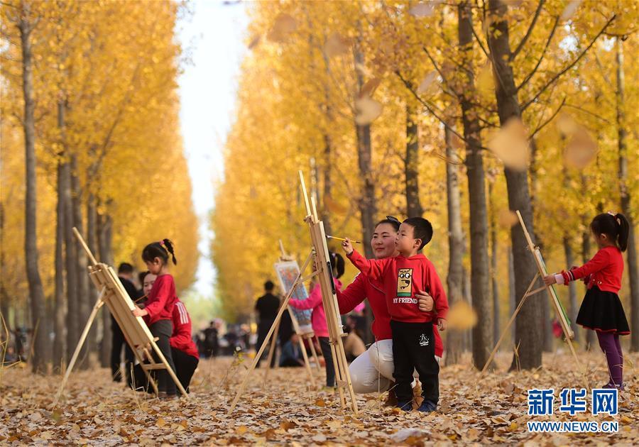 沧州职教中心幼儿园的孩子到大运河森林生态园内赏秋写生