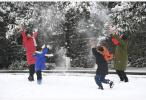 """元旦假期,南方多地下了一场""""有情调""""的雪"""
