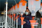 河南鲁山:为企业复工复产保驾护航