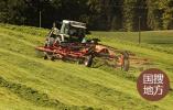 山东大穗高产小麦育种取得新突破 亩产超831公斤